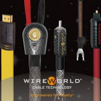 Wire World/ワイヤーワールドのアクセサリー高価買取!!